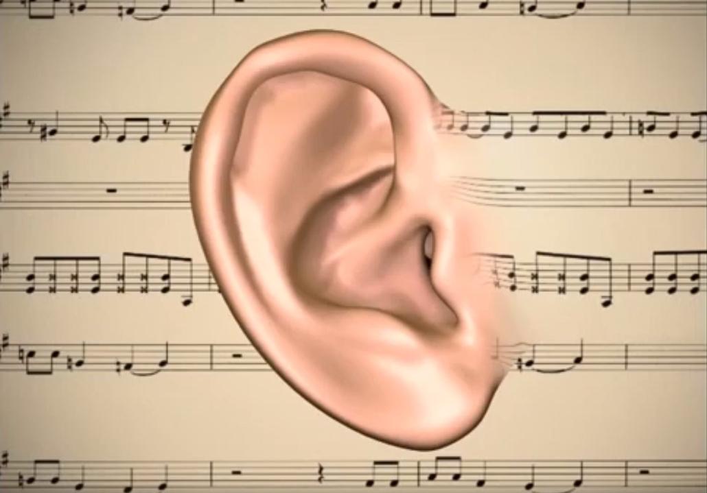 Das Auge führt den Menschen in die Welt, das Ohr führt die Welt in den Menschen ein. Lorenz Oken
