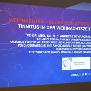 Expertenvortrag zum Thema Tinnitus und Stress